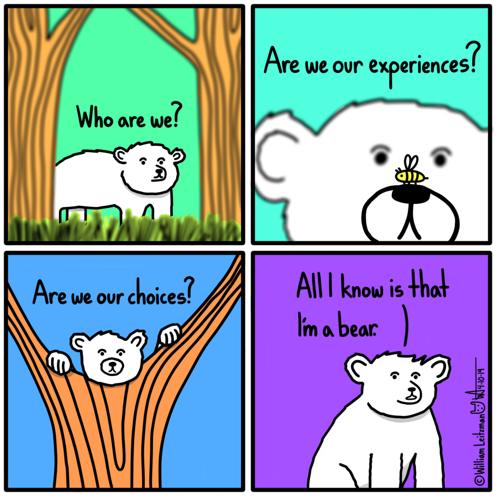 Who are we? Are we our experiences? Are we our choices? All I know is that I'm a bear.