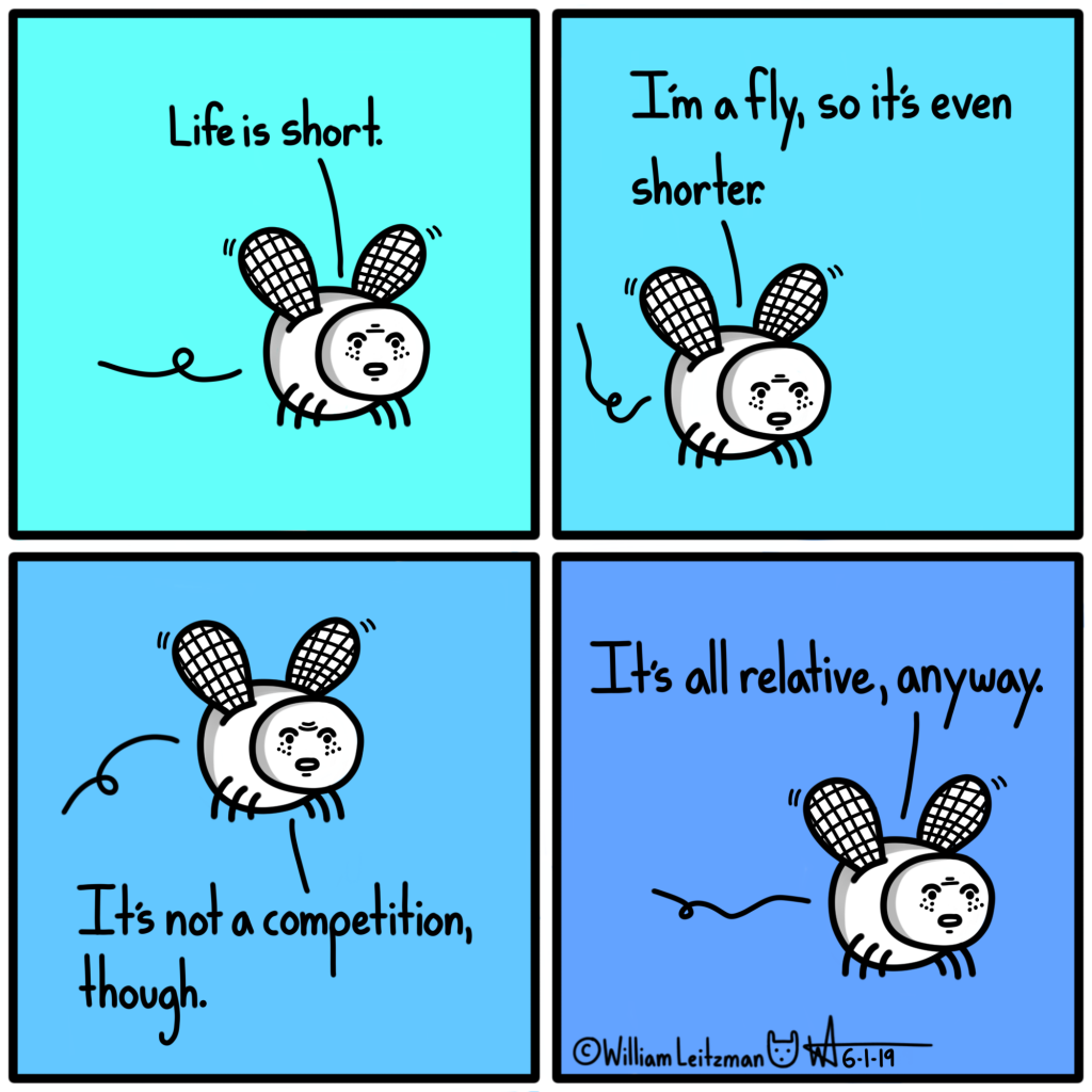 Life is short. I'm a fly, so it's even shorter. It's not a competition, though. It's all relative, anyway.