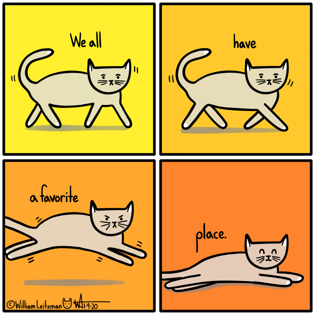 We all have a favorite place.