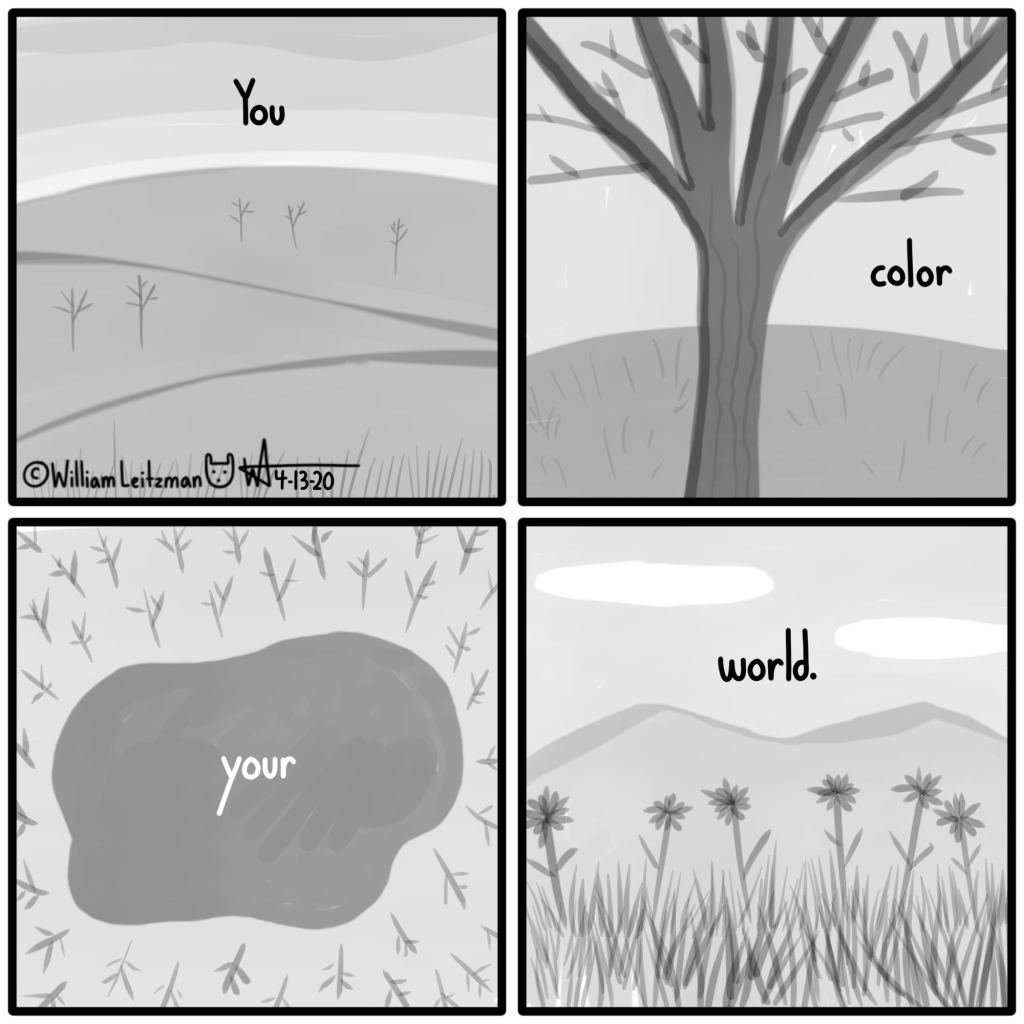 You color your world.